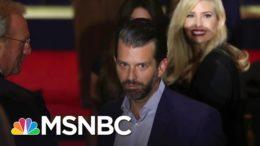 Donald Trump Jr. Tests Positive For Covid-19   The ReidOut   MSNBC 8