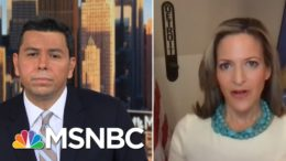 Secretary Jocelyn Benson (D-MI) On Election Certification Delay | Ayman Mohyeldin | MSNBC 8