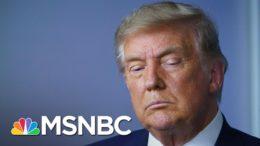 Judge Dismisses Trump's Pennsylvania Election Lawsuit | MSNBC 2