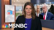 Trump Campaign Formally Requests A Recount In Georgia | MTP Daily | MSNBC 3