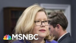 GSA Offers To Brief Lawmakers On Transition On November 30 | Ayman Mohyeldin | MSNBC 4