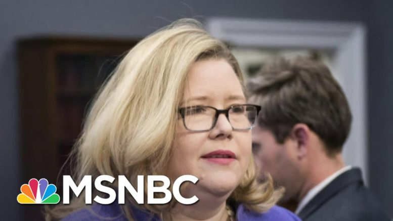 GSA Offers To Brief Lawmakers On Transition On November 30 | Ayman Mohyeldin | MSNBC 1