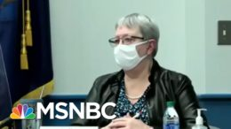 GSA Says Biden Transition Can Formally Begin | The ReidOut | MSNBC 9
