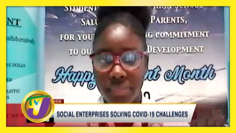 Social Enterprises Solving Covid Challenges - November 22 2020 1