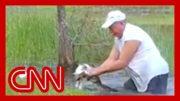 Florida man saves puppy from alligator 3