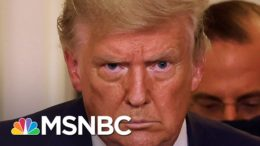 'Wounded' Trump Caves On Biden Transition As Allies Abandon Him | The 11th Hour | MSNBC 4