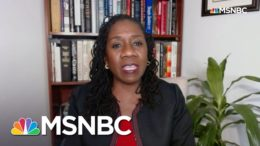 'Racist Dog Whistle' Underpins Trump Attack On Election Results: Ifill | Rachel Maddow | MSNBC 1