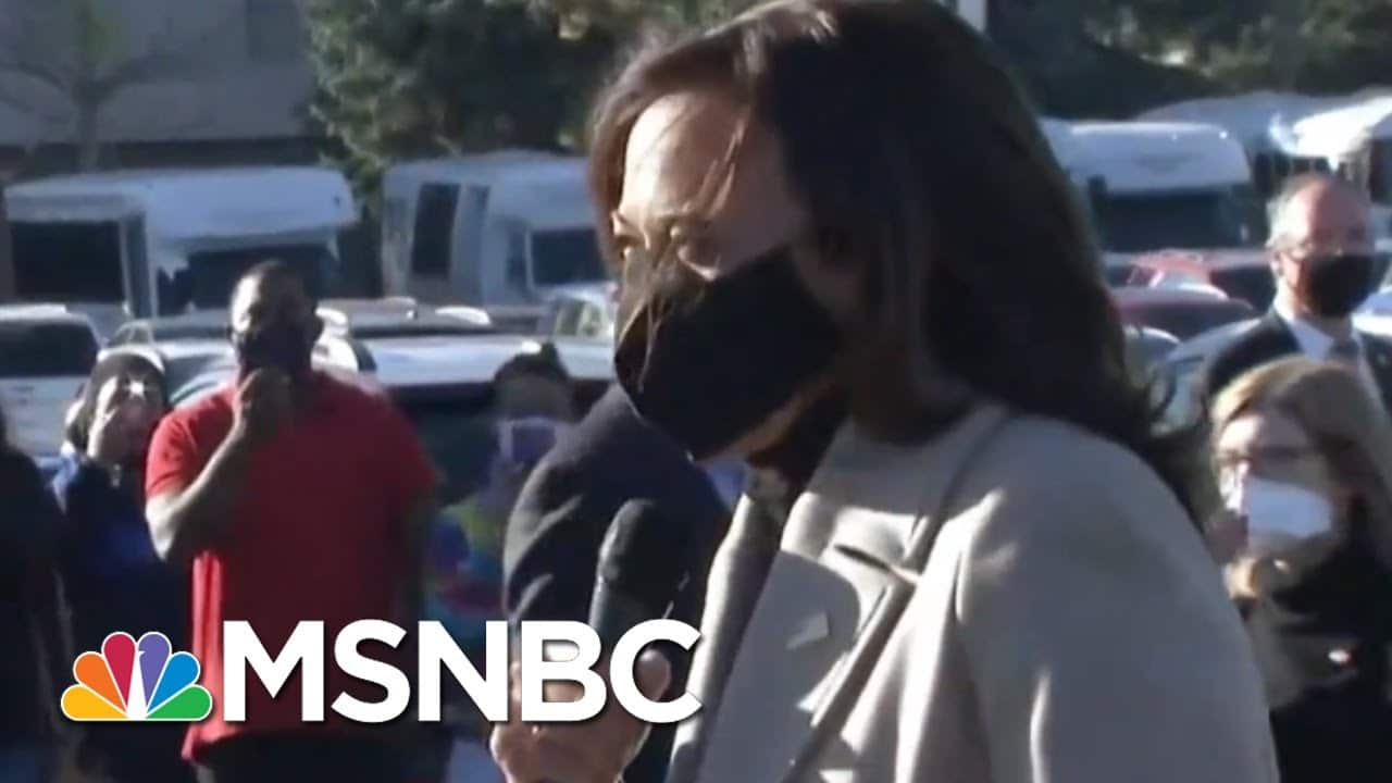 Kamala Harris Speaks To Supporters In Detroit During Final Campaign Stops | MSNBC 8