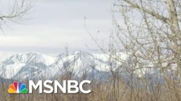 Tom Brokaw Looks Forward To Better Days Ahead | Morning Joe | MSNBC 6