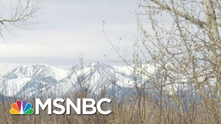 Tom Brokaw Looks Forward To Better Days Ahead | Morning Joe | MSNBC 1