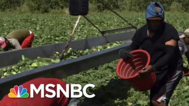 Chris Hayes: This Is What Essential Work Looks Like | All In | MSNBC 10