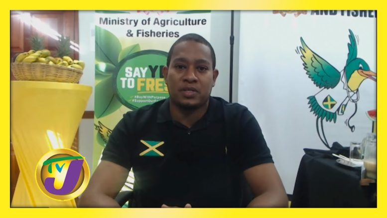 Food Shortage Looming? TVJ Smile Jamaica - November 25 2020 1