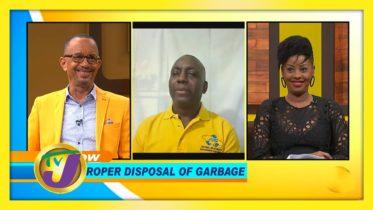 Improper Disposal of Garbage: TVJ Smile Jamaica - November 25 2020 6