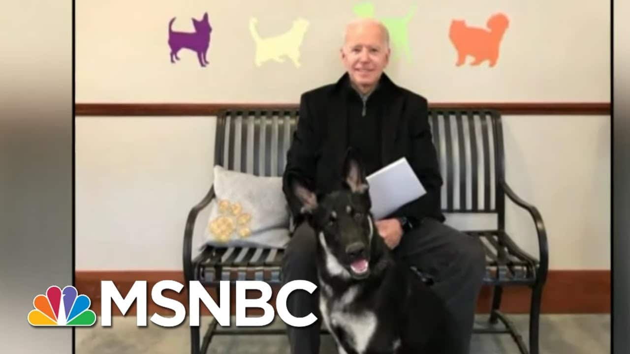 President-Elect Biden Suffers Fracture In Right Foot   Morning Joe   MSNBC 9