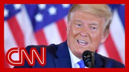 Trump calls to halt vote counting, prematurely declares victory 4