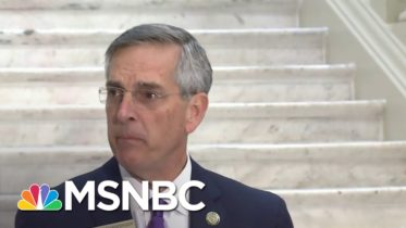 Georgia Secretary Of State Says Absentee Ballots, Early Votes Still Being Counted | MSNBC 6