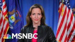 Michigan Secretary Of State Calls Trump's Lawsuit To Halt Vote Count 'Meritless' | MSNBC 6