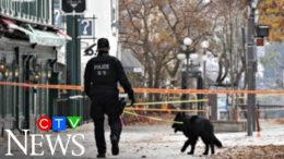Suspect facing murder charges after deadly Quebec City sword attack 7