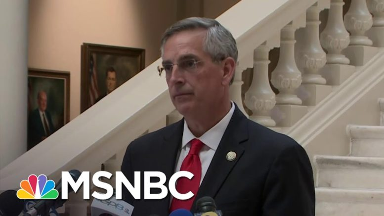 Georgia Secretary Of State Assures Election Process Will Be 'Open And Transparent' | MSNBC 1