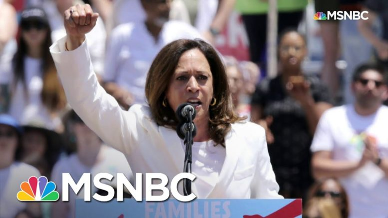 Harris Makes History As First Female, Black, South Asian American VP   MSNBC 1