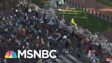 Crowds Gather For Second Day at Black Lives Matter Plaza After Biden Victory Projected | MSNBC 10