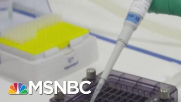 Pfizer Says Early Data Shows Its Covid-19 Vaccine Is 90% Effective | MTP Daily | MSNBC 6