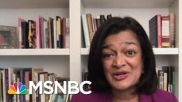 Jayapal: 'We All Unified Around' Biden Even Though He 'Was Not Our Top Choice' | MTP Daily | MSNBC 9