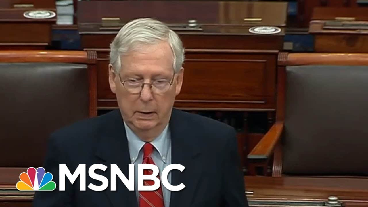 McConnell Asserts Trump Is 'Within His Rights' To Look Into Election 'Irregularities' | MSNBC 1