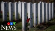 Veteran determined to bring dignity to fallen soldiers 3