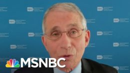 Dr. Fauci Says Pfizer Could Have Doses Of Vaccine Available By December | Andrea Mitchell | MSNBC 8