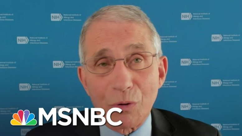Dr. Fauci Says Pfizer Could Have Doses Of Vaccine Available By December | Andrea Mitchell | MSNBC 1