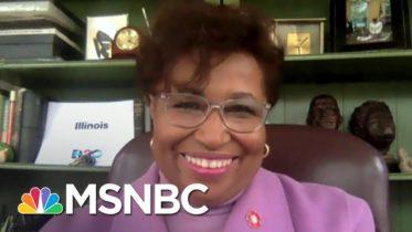 First Black Woman Senator Reacts To Harris' Historic Win | Ayman Mohyeldin | MSNBC 6