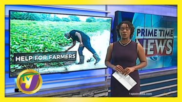 Gov't Support for Farmers - November 10 2020 6