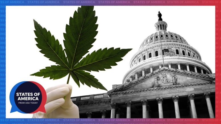 Drug ballot measures win big. Is the peaceful transfer of power endangered? | States of America 1