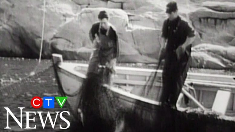 CTV News Archive: 1969 report looks into the  fishing industry in Newfoundland 1