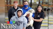 Family reunited with dog missing since January 5