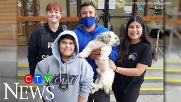 Family reunited with dog missing since January 6