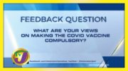 TVJ News: Feedback Question - December 15 2020 4