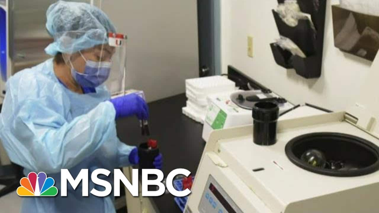 Vaccines Aren't A Light Switch But Developing Process, Says Doctor   Morning Joe   MSNBC 1