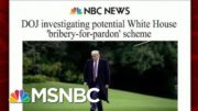 DOJ Investigating Potential White House 'Bribery-For-Pardon' Scheme | Morning Joe | MSNBC 5