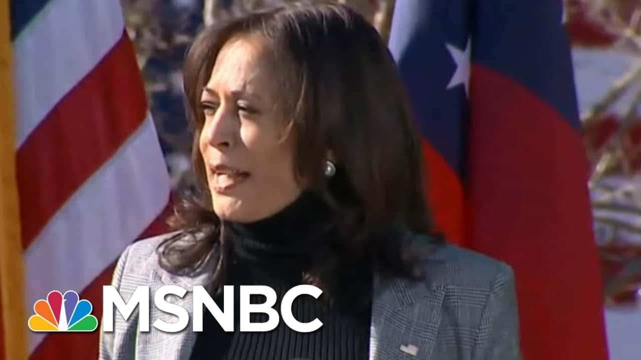 Harris Campaigns For Warnock And Ossoff In Georgia Senate Runoff Election | MSNBC 6