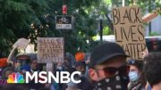The State Of The Black Lives Matter Movement, And Its Future, Analyzed by Experts | MSNBC 2