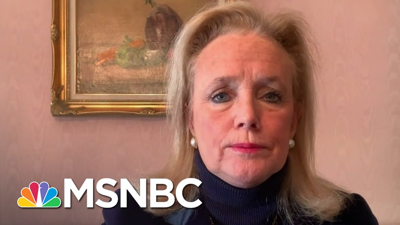 Rep. Dingell On Trump Signing Relief Bill: 'This Is A Down Payment' | Stephanie Ruhle | MSNBC 4