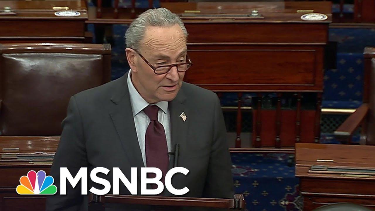 Schumer Calls On Senate To Unanimously Pass Stimulus Check Increase   MSNBC 8