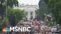 Reflecting On This Year's Racial Reckoning In America   Deadline   MSNBC 5