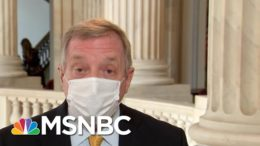 Durbin: Hawley Challenge To Electoral College Not 'Going To Be Taken Seriously' | MTP Daily | MSNBC 3