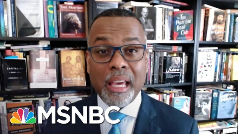 Eddie Glaude On The White House Covid Response   Deadline   MSNBC 1