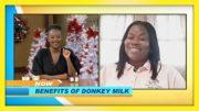 Benefites of Donkey Milk: TVJ Smile Jamaica - December 2 2020 2