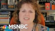'It's Just A Total Mess.': HHS Botches Takeover Of Covid-19 Data | Rachel Maddow | MSNBC 2