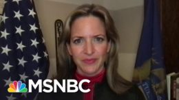 MI Secretary Of State: 2020 Election Was 'As Secure As It's Ever Been' | The Last Word | MSNBC 8